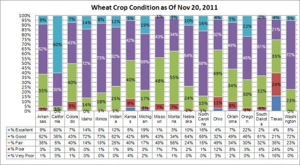 Wheat Crop Condition