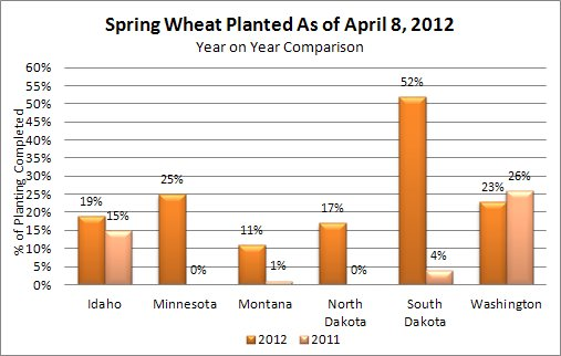 Spring Wheat Planted through April 8 2012